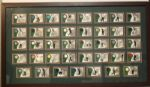 Framed Set of 2001 UDA Tour Threads - 39 Cards