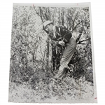 Sam Snead 4/8/60 Hitting Out Of The Woods Masters